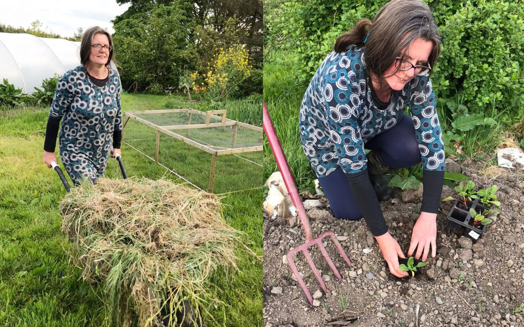 Postcards from the Edge: Aisling Wheeler – 'We must re-learn the skills to grow our own food'