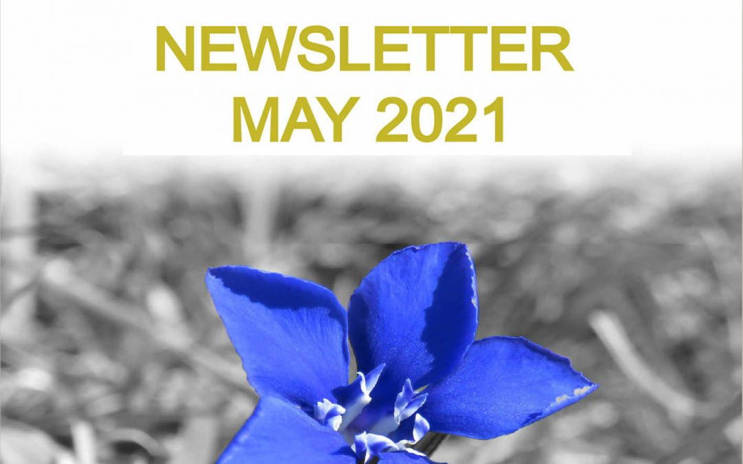 Clare PPN Newsletter May 2021